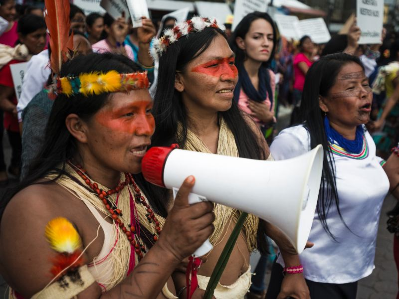 Stop China and Ecuador from Drilling the Amazon!