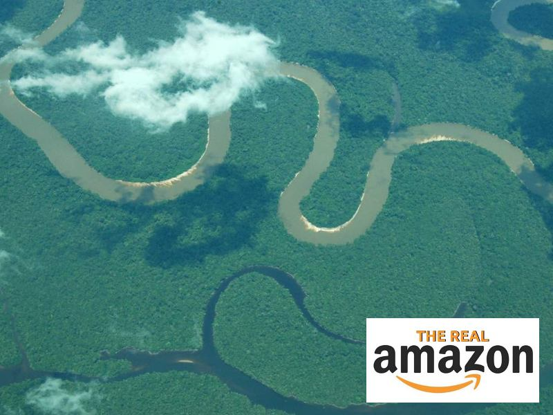 Ask Amazon's Founder To Support the Real Amazon!